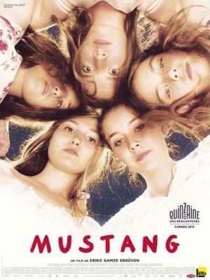 affiche du film Mustang