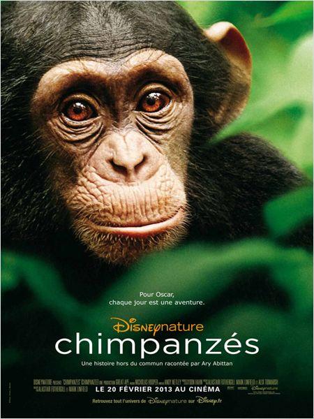 affiche du film Chimpanzés